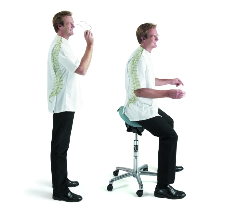 The Bambach positions your spine in its natural healthy S shape